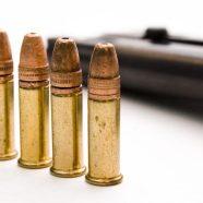 Arizona Gun Control Rights… Do you know them?